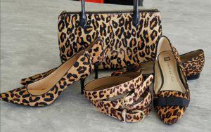 Shoes.Purse_.Belt-3-Cover.KG_-300x188